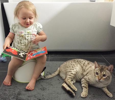 2-åring läser på pottan under potträningen